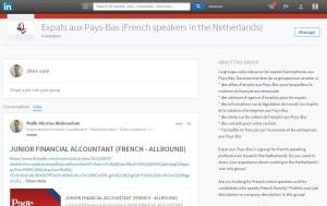 Groupe LinkedIn Expat aux Pays-Bas