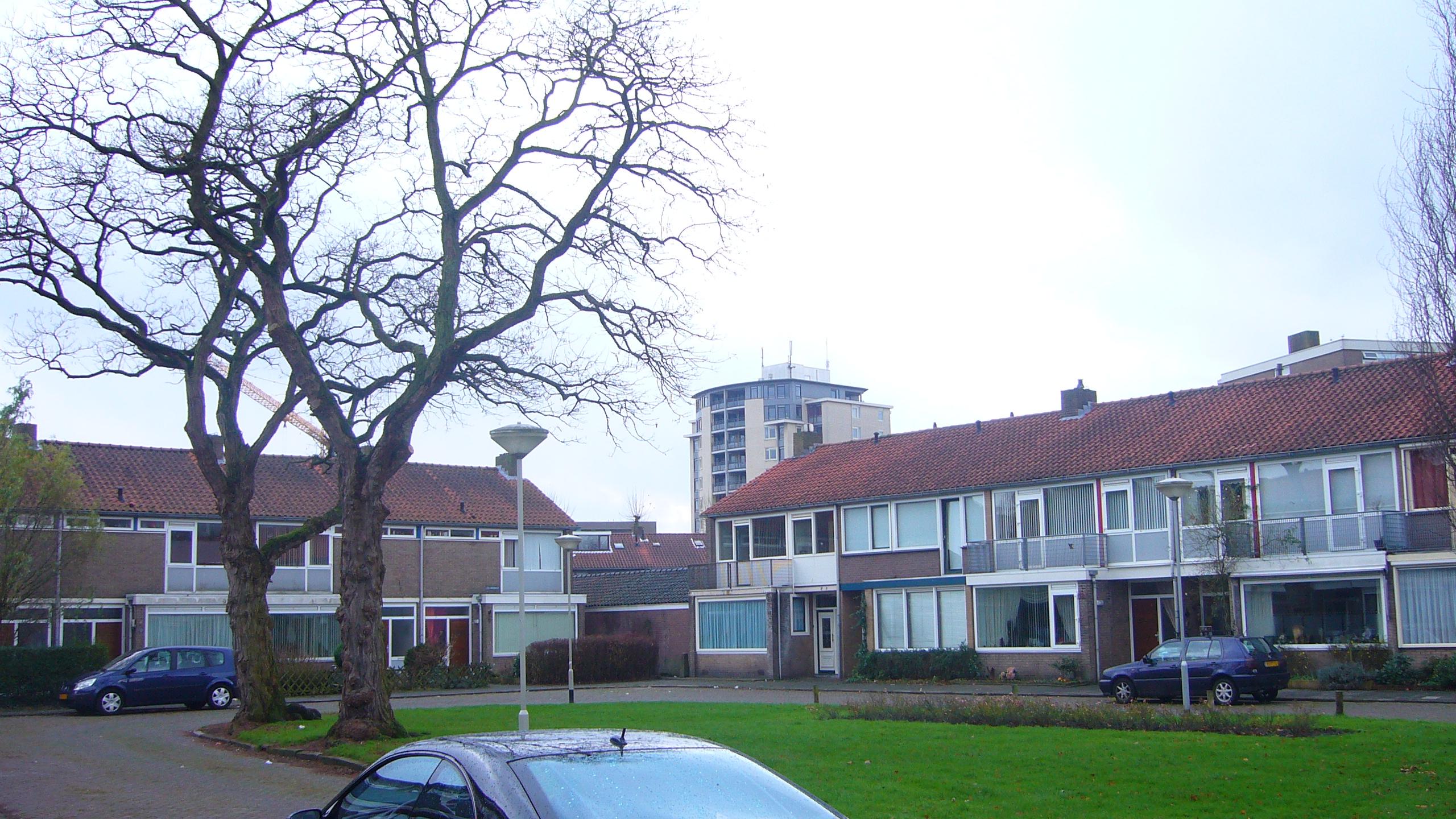 Breda et les maisons jumelées typiques aux Pays-Bas