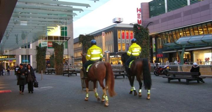 Rotterdam rue commercante