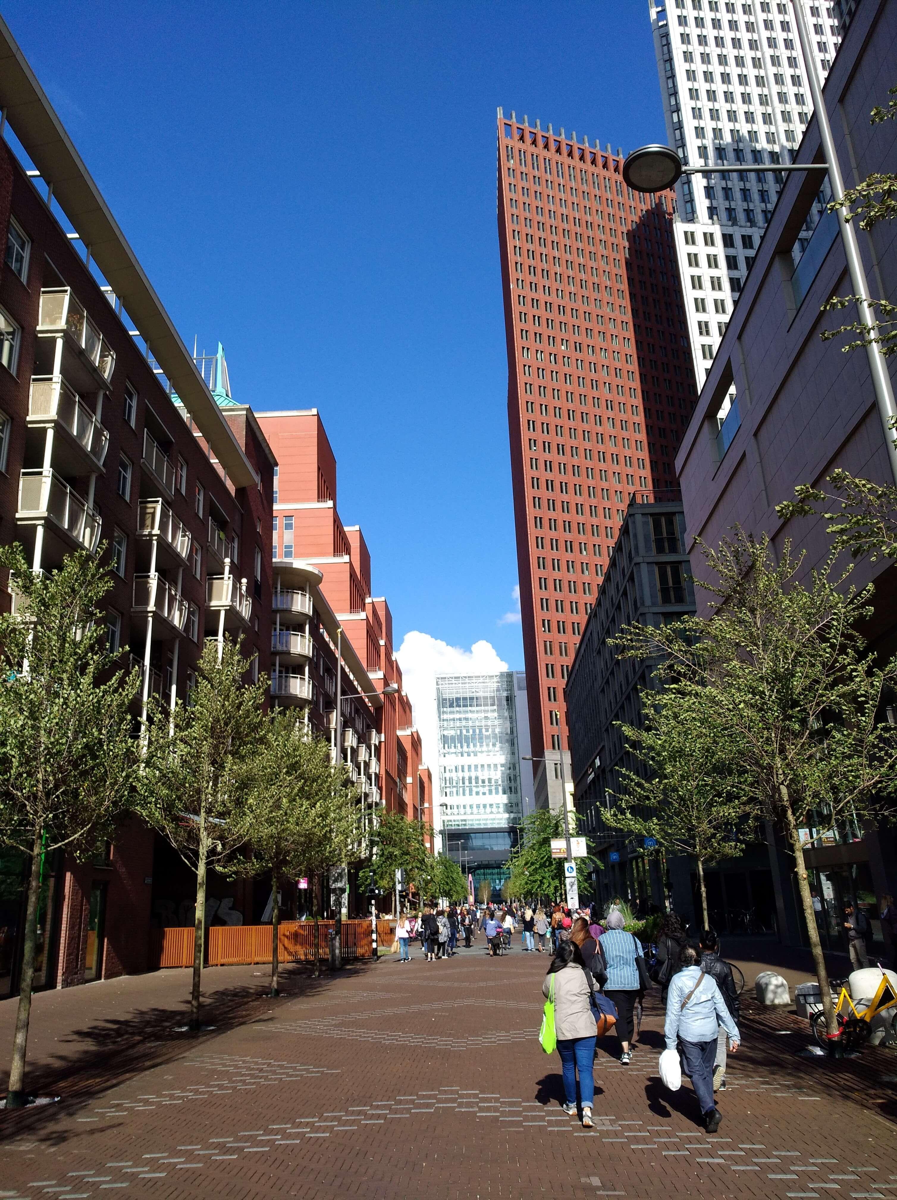 Visiter La Haye: lieux à visiter, hôtels, restaurants, transports, bons plans