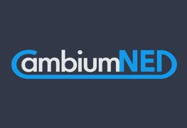 CambiumNed, site pour apprendre la grammaire néerlandaise